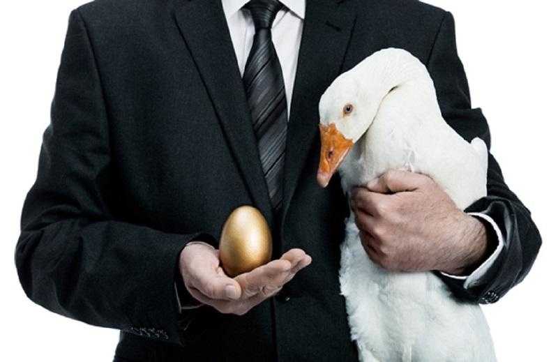 gusynja-zolotye-jajca-stoimost-biznesa